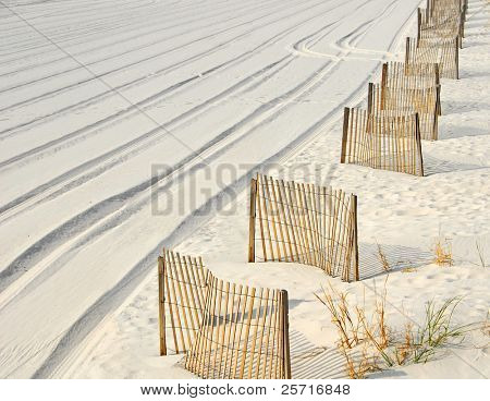 Sand Dune fences and tracks