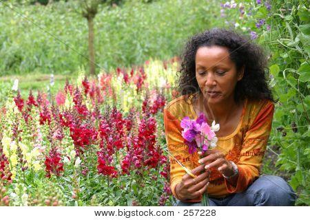 Krása v zahradě