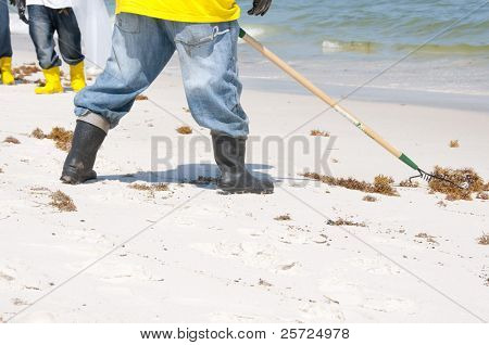 PERDIDO KEY, FL - JUNE 10: Oil spill workers collect tainted debris and dark oil patches washed ashore at Perdido Pass, AL on June 10, 2010 as oil washes ashore.