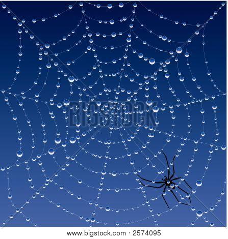 Spiderweb_Background