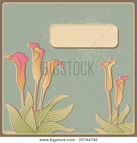 invitation card with calla flowers, vector
