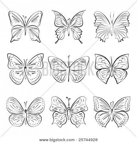 set of vector hand drawn butterflies