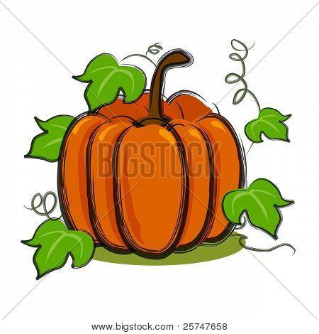 pumpkins with vines