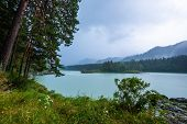 The river of Katun in Altai Republic during rainy day. Russia poster