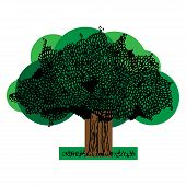 Tree With Foliage Icon. Vector Of A Tree With Green Foliage. Hand Drawn Deciduous Tree. poster