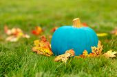 Teal Pumpkin Outside. Symbol Of Alternative Non-food Treats For Kids With Food Allergy. The Concept  poster