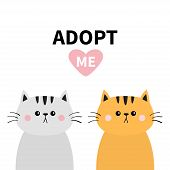 Orange Gray Cat Silhouette Set. Adopt Me. Pink Heart. Pet Adoption. Kawaii Animal. Cute Cartoon Kitt poster