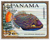 PANAMA - CIRCA 1978: A stamp printed in Panama shows tropical reef fish Balistipus Undulatus, circa