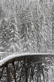 foto of trussle  - Northern Pacific Rail Bridge near Steven - JPG