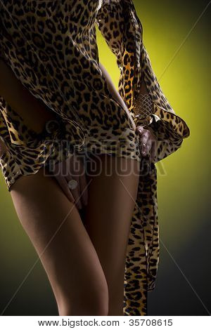 The Beautiful Woman In The Leopard A Dress With Opened By A Waist And A Hip