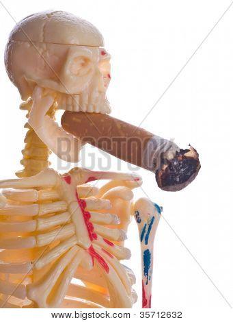 Stub and skeleton. Isolation on the white