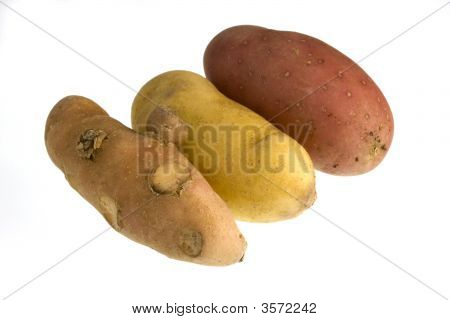 Three New Fingerling Potato Isolated On White