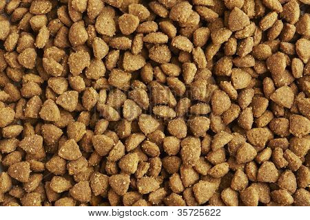 Dog Or Cat Food Close Up