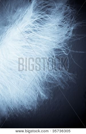 plumas de macro
