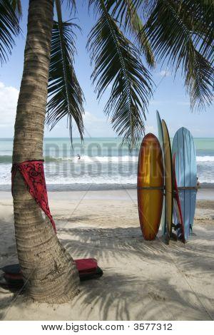 Placas de Bali