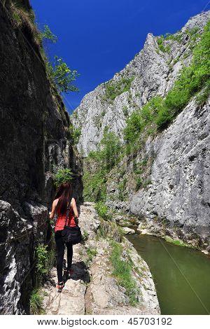 Nature photographerat Turzii Canyon, Transylvania, Romania