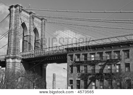 Brooklyn Bridge And Brownstone B&w