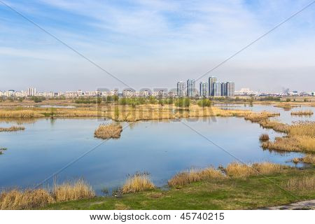 Cityscape With Aquatic Environment
