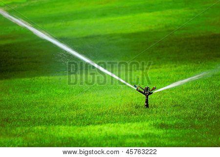 Sprinkler spraying stream of water on lush green grass