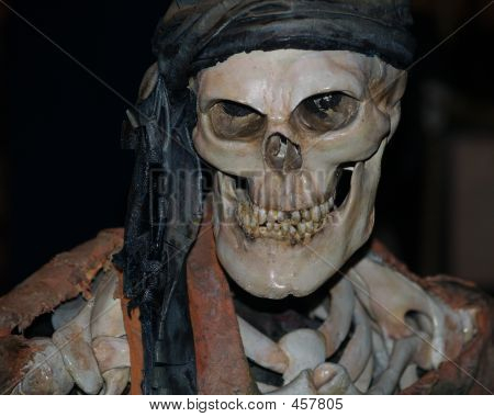 Pirate Bones Costume 2
