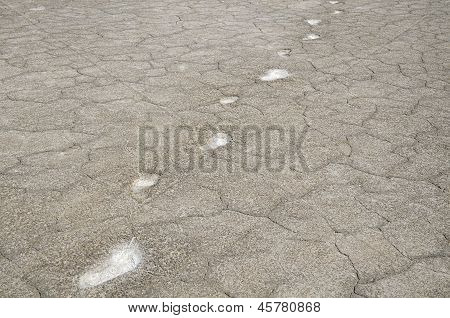 Dried Salt Earth