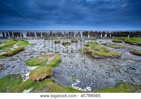 Old Wooden Dike And Mud At Low Tide, Moddergat, Netherlands