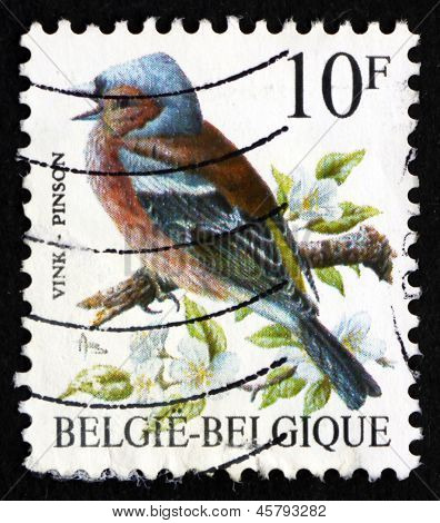 Postage Stamp Belgium 1990 Pinson, Common Chaffinch