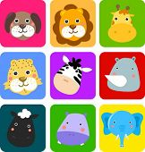 Cute animal icon