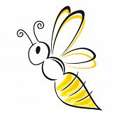 picture of sting  - stylized yellow and black bee flying isolated - JPG