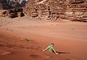 Tourist In The Desert poster