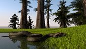 stock photo of burmese pythons  - python in jungle lake - JPG