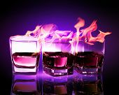 picture of absinthe  - Image of three glasses of burning puple absinthe - JPG