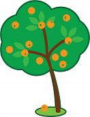 Cute Orange Tree