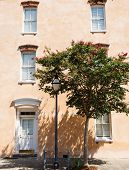 picture of crepe myrtle  - Peach colored stucco wall with windows and an old lampost by a crepe myrtle tree - JPG