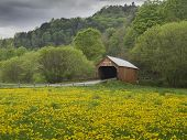 image of covered bridge  - Covered bridge in Vermont - JPG