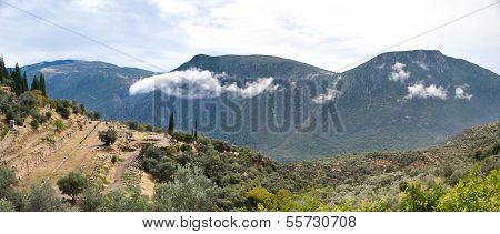 The Parnassus Valley