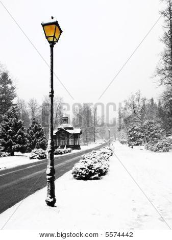 Street Lamp In Winter