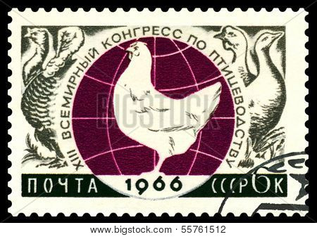 Vintage Postage Stamp. Xiii Glode  Congress On Fowling.