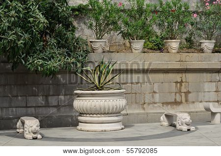 Benches, Lions And Flower