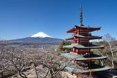 stock photo of mount fuji  - Mountain Fuji in spring with pagoda in the foreground in Sakura - JPG