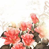 Grunge Vector Background With Pink Roses For Design