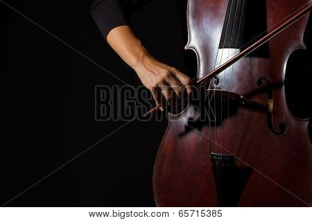 Beautiful Woman Holding A Cello With Selective Light And Black Dress