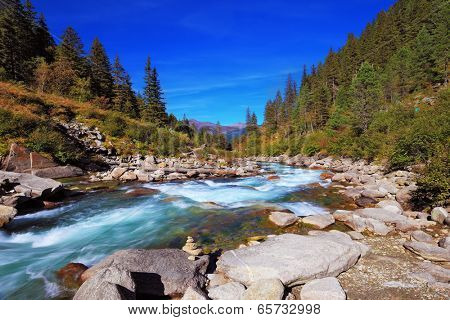 Pastoral in the Alpine mountain valley in Austria. Cascades of cold water at the source of the famous Krimml waterfalls. Rapid mountain stream of coniferous forests