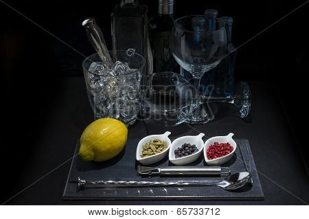 Utensils And Ingredients To Prepare A Gin Tonic