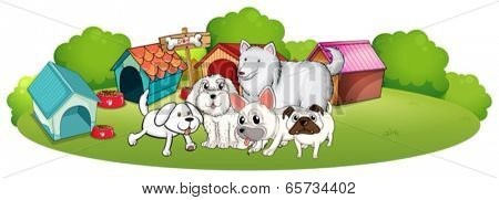 Illustration of a group of adorable dogs on a white background