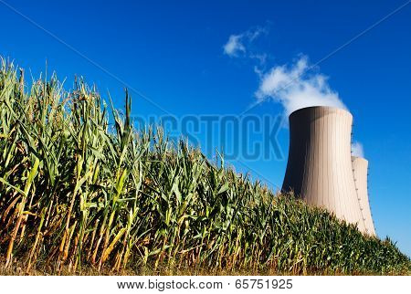 Green Corn Field Against Nuclear Power Plant
