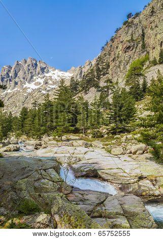 Restonica Valley In Corsica