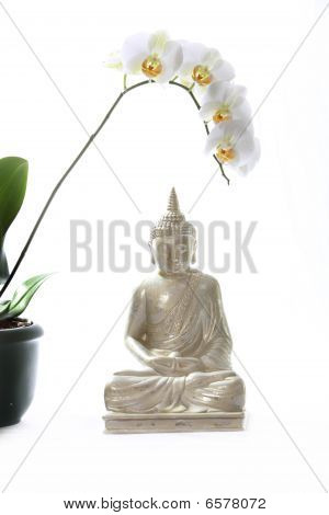 Buddha And Orchid With Textile