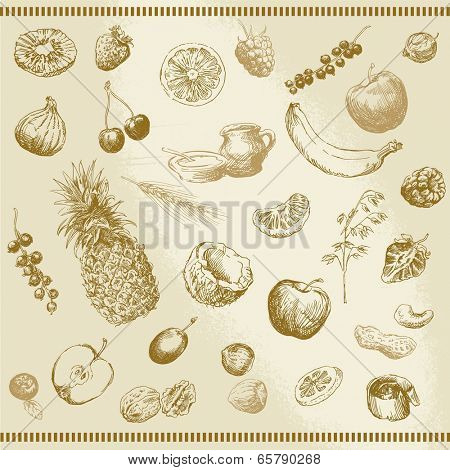 hand drawn fruits and muesli collection