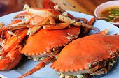 picture of cooked crab  - Steamed Crab Legs with Thai spicy seafood sauce - JPG